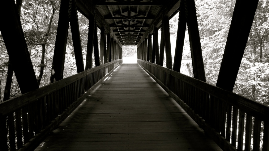 Wooden Bridge, Roswell 2010